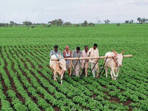 Bihar Government proposing weather related farming training programme.