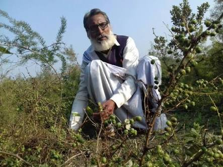 Shambhu Sharan Bhartiya